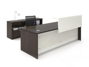 Reception desk with translucent modesty panel and half length transaction counter and matching credenza