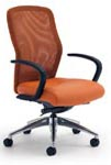 Leader series business chairs