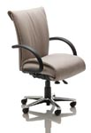 Fortune series business chairs